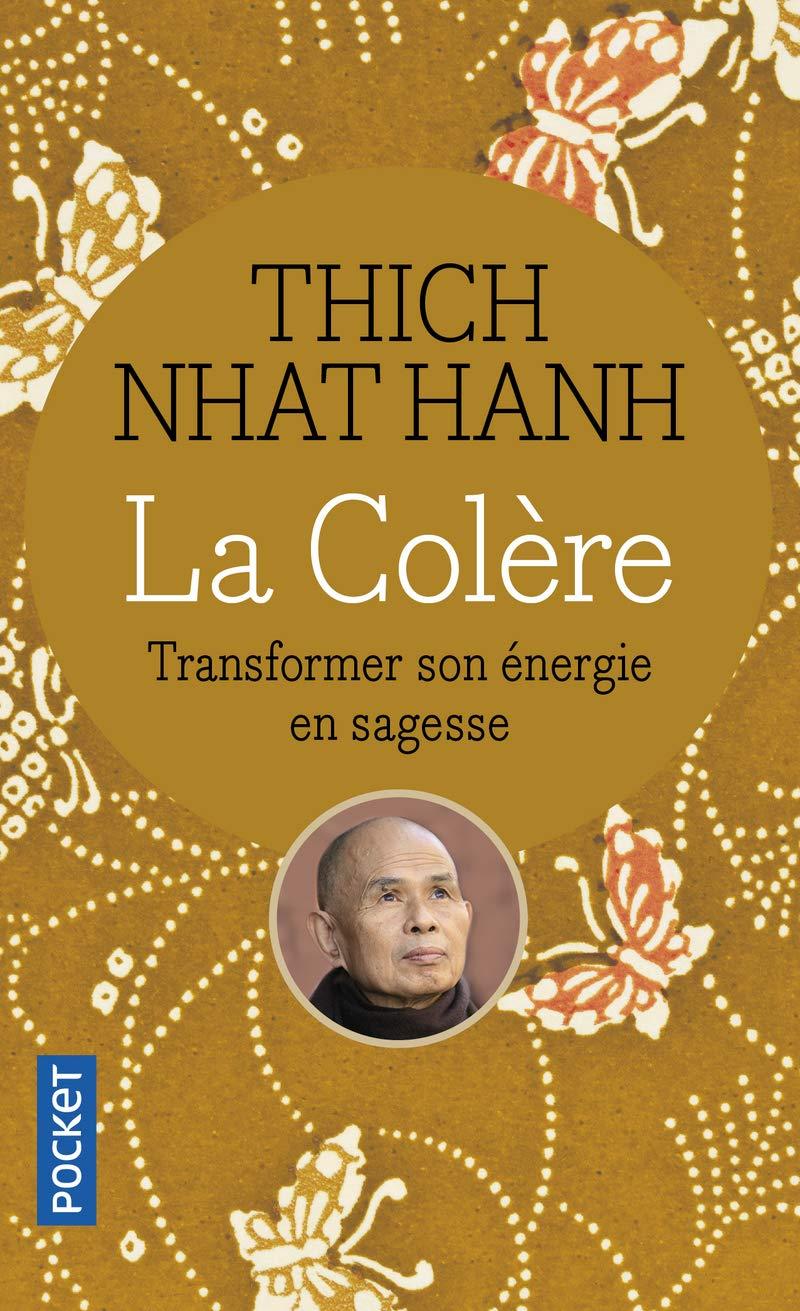 La Colère Transformer son énergie en sagesse
